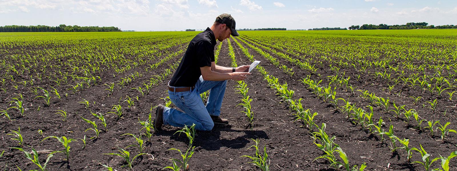 Стартиране на земеделско стопанство